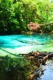Smaragdpöl en av destinationen Arkivbilder