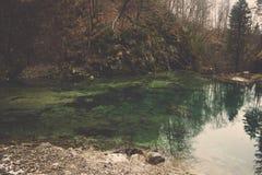Smaragdpölen bland kullen reflekterar det gröna trädet och skogen arkivbild