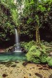 Smaragdpool auf Dominica lizenzfreie stockbilder
