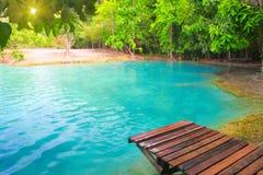 Smaragdpool. Krabi, Thailand Lizenzfreie Stockbilder