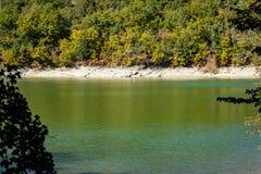 Smaragdvatten av en sjö i Sukko, mot bakgrunden av ett berg som täckas med skogar royaltyfri fotografi
