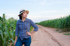 Smart Asian woman farmer in corn field. With digital tablet - agriculture farming small business owner concept Stock Images