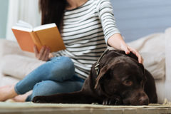 Smart attractive lady relaxing with a book Stock Photography