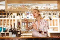 Smart attractive woman checking the colour of wine. Dark red. Smart attractive woman holding a glass of wine while checking its colour stock images