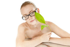 Smart beauty girl wearing  glasses. Royalty Free Stock Photography