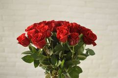 Smart bouquet of scarlet roses royalty free stock photos