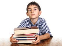 Smart boy with books Royalty Free Stock Image