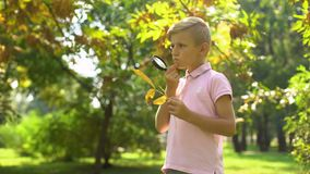 Smart boy viewing leaf through magnifying glass, studying environment, hobby