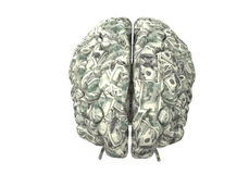 Smart brain can earn more money. Money brain isolated on white background with clipping path Stock Photos