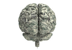 Smart brain can earn more money. Money brain isolated on white background with clipping path Royalty Free Stock Images