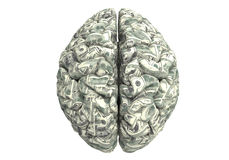 Smart brain can earn more money. Money brain isolated on white background with clipping path Royalty Free Stock Photography