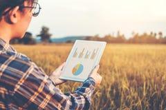 Smart bruka jordbruks- teknologi och organiskt jordbruk Wo arkivfoto