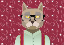 Smart cat,  with glasses,scientist , pattern science,  student, flat  Royalty Free Stock Photos