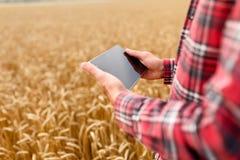 Smart che coltiva facendo uso delle tecnologie moderne nell'agricoltura Equipaggi l'agricoltore dell'agronomo con il computer dig Immagine Stock Libera da Diritti