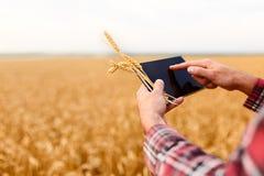 Smart che coltiva facendo uso delle tecnologie moderne nell'agricoltura Equipaggi l'agricoltore dell'agronomo con il computer dig Fotografie Stock