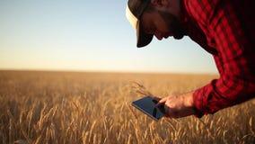 Smart che coltiva facendo uso delle tecnologie moderne nell'agricoltura L'agricoltore dell'agronomo tiene il visualizzatore del c archivi video