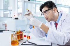 Smart chemist doing chemical test in lab Royalty Free Stock Photo
