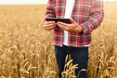 Smart cultivant utilisant des technologies modernes dans l'agriculture Équipez le producteur d'agronome avec la tablette numériqu Photographie stock