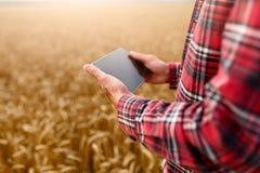 Smart cultivant utilisant des technologies modernes dans l'agriculture Équipez le producteur d'agronome avec la tablette numériqu Photos stock