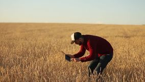 Smart die gebruikend moderne technologieën in landbouw bewerken De agronoomlandbouwer houdt binnen digitale de computervertoning  stock video