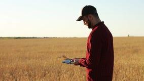 Smart die gebruikend moderne technologieën in landbouw bewerken De agronoomlandbouwer houdt en raakt digitale tabletcomputer stock videobeelden