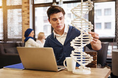 Smart diligent student studying genetics. New discovery. Smart diligent student sitting at the table and using laptop while studying genetics stock image
