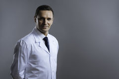 Smart doctor looking serious on a grey background Stock Photography