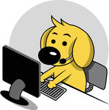 Smart Dog with Computer Stock Images