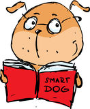 Smart dog reading book - Vector illustration Stock Images