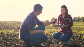 Smart eco farming teamwork using modern technologies in agriculture. farmers man and woman work in the dirt field the. Earth study on digital tablet. couple stock footage