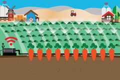 Smart Farm Concept,Automatic watering - Vector. Illustration Royalty Free Stock Photography