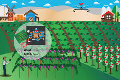 Smart Farm Concept,Farmer used drone for watching his farm - Vec. Tor Illustration Stock Photo