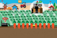 Smart Farm Concept,Intelligent watering and pipe equipment. Vector Illustration Stock Images