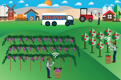 Smart Farm Concept,online marketing and delivery - Vector. Illustration Stock Images