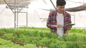 Smart farm and farm technology concept.Smart young asian farmer  using tablet to check quality