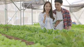 Smart farm and farm technology concept. Smart young Asian farmer using tablet to check quality
