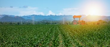Smart farming with agriculture industry 4.0 concept, farmer use tractor in the farm for Plowing, Harrowing, Sowing Intercultivati. On, Spraying/Pesticide royalty free stock image