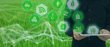 Smart farming,industrial agriculture concept with artificial intelligenceai. Smart Farmer use robot and  augmented reality techn. Ology to research,collect stock image