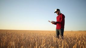 Smart farming using modern technologies in agriculture. Agronomist farmer holds digital touch tablet computer display in. Smart farming using modern technologies stock footage