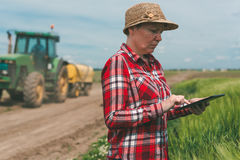 Smart farming, using modern technology in agricultural activity. Female farmer agronomist with digital tablet computer using mobile app in wheat crops field royalty free stock image
