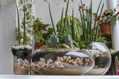 Smart garden Stock Images