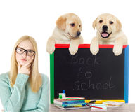 Smart girl with glasses Royalty Free Stock Images