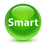 Smart glassy green round button Royalty Free Stock Image