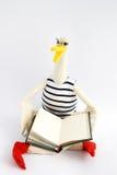 Smart goose Stock Photos