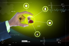 Smart hand showing human heart. In attractive background royalty free stock photography