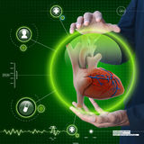 Smart hand showing human heart Royalty Free Stock Images
