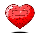 Smart heart smart love Royalty Free Stock Photography