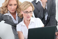 Smart intelligent businesswomen Stock Photos