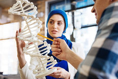 Smart international students learning genetics. Sound foundation of knowledge. Pleasant smart international students learning genetics and studying DNA model royalty free stock photo