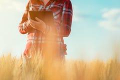 Smart lantbruk, genom att använda moderna teknologier i jordbruk royaltyfri foto